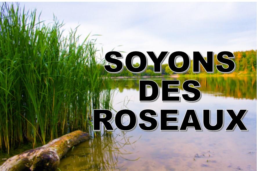 Prédication du 04 Février 2018: SOYONS DES ROSEAUX!