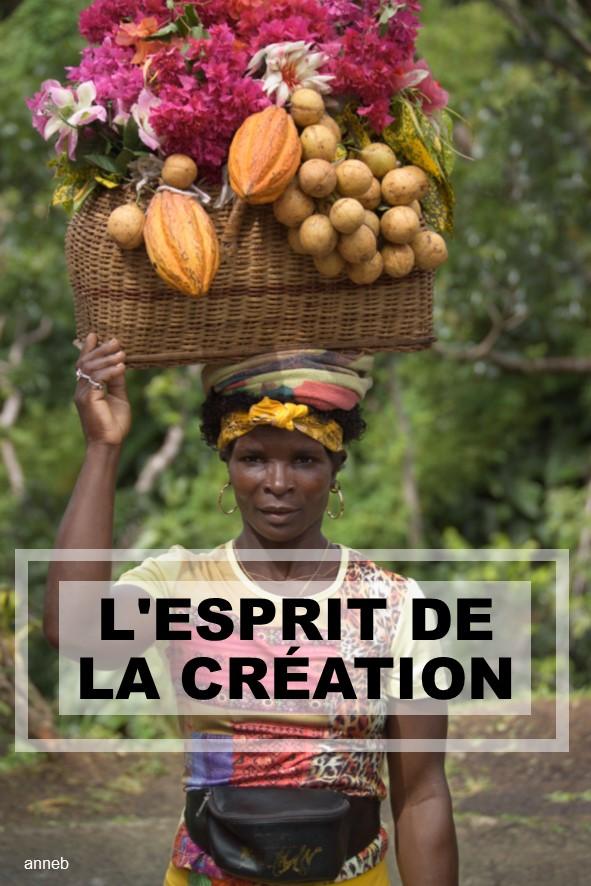 Prédication du 07 Octobre: L'ESPRIT DE LA CRÉATION