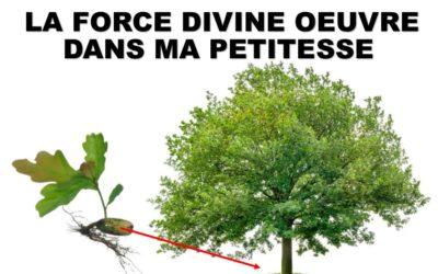 LA FORCE DIVINE OEUVRE DANS MA PETITESSE (Prédication du 13 Juin 2021)